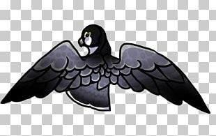 Beak Bird Feather Wing PNG