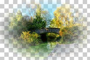 Landscape Painting LOFTER Nature Desktop PNG