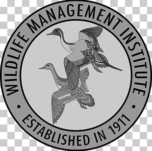 Wildlife Management United States Fish And Wildlife Service Wildlife Conservation PNG