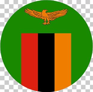 Football Association Of Zambia Green Logo Flag Of Zambia PNG