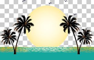Summer Vacation Beach PNG