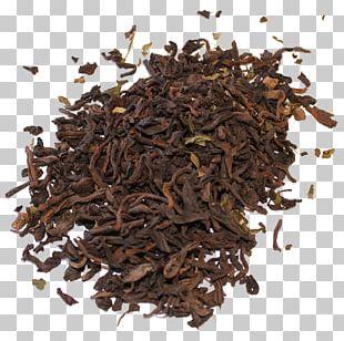 Nilgiri Tea Darjeeling Tea Oolong Green Tea PNG