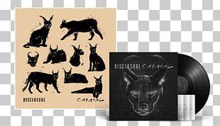 Caracal Compact Disc Disclosure Album Phonograph Record PNG