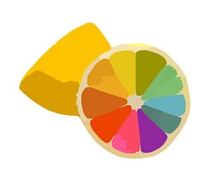 Color Wheel Color Scheme Color Theory PNG
