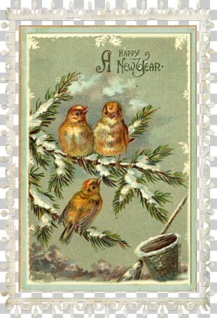 New Year's Day Santa Claus Greeting & Note Cards New Year Card PNG
