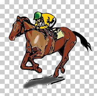 Thoroughbred Jockey Horse Racing Equestrianism PNG