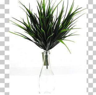 Green Wall Flowerpot Furniture Plant PNG
