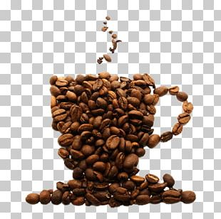 Coffee Bean Espresso Tea AeroPress PNG