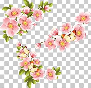 Paper Flower Drawing Embroidery Color PNG