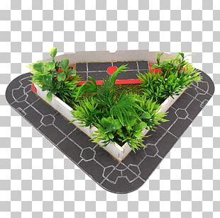 Flowerpot Rectangle Herb PNG