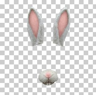 Snapchat Filter Bunny Simple PNG