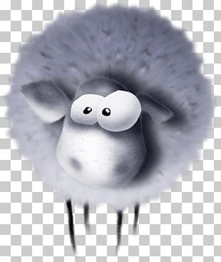 Sheep White PNG