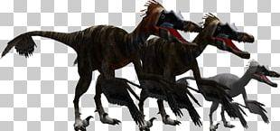 Zoo Tycoon: Dinosaur Digs Velociraptor Utahraptor Zoo Tycoon 2 Jurassic Park: Operation Genesis PNG