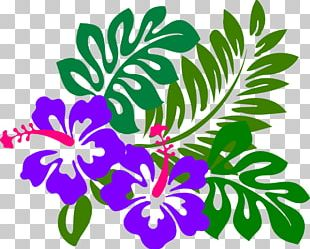 Hawaiian Hibiscus Flower PNG