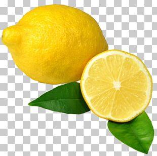 Lemon-lime Drink Sweet Lemon Key Lime Rangpur PNG