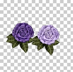Garden Roses Purple Beach Rose Flower PNG