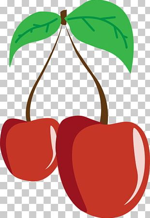 Cherry Fruit Nutrition PNG