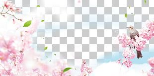 Poster Spring PNG