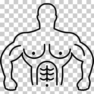 Muscle Human Body Biceps PNG