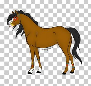 American Paint Horse Mustang PNG