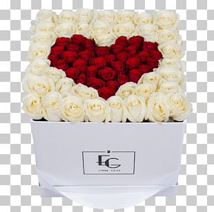 Garden Roses EMMIE GRAY Flower Box Floral Design PNG