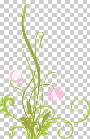 Floral Design Flower Painting Art PNG