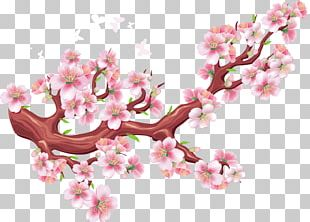 Cherry Blossom Bird Tree Wall Decal PNG