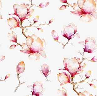Pink Flowers Shading PNG