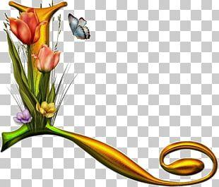 Letter Alphabet Floral Design Font PNG