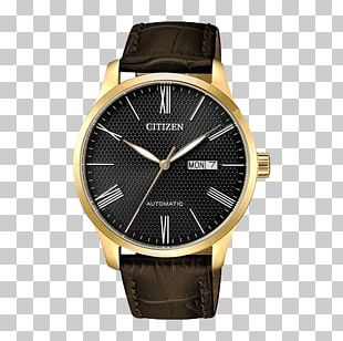 Citizen Holdings Automatic Watch Eco-Drive Strap PNG
