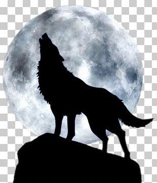 Dog Full Moon T-shirt Black Wolf PNG