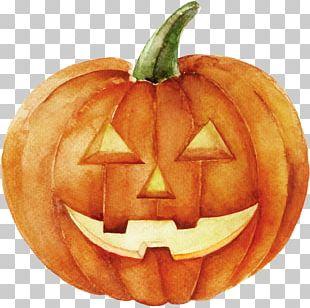 Jack-o'-lantern Jack Skellington Pumpkin Watercolor Painting Halloween PNG