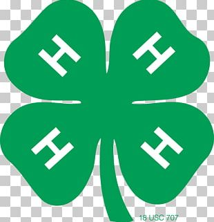 United States 4-H Clover Organization Youth PNG