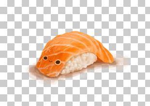 California Roll Smoked Salmon Sashimi Commodity PNG