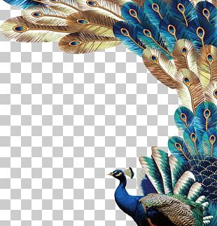 Peafowl Feather Euclidean PNG