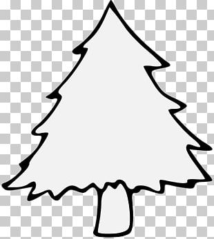 Christmas Tree Pine Stencil Branch PNG