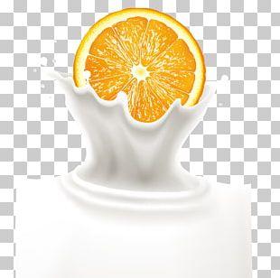 Orange Juice Milk Orange Drink PNG