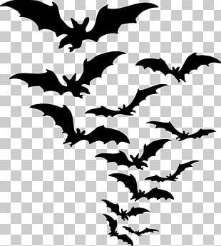Baseball Bats PNG