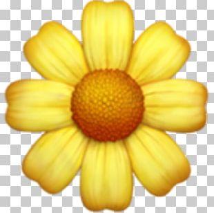 Emoji Sticker Flower PNG