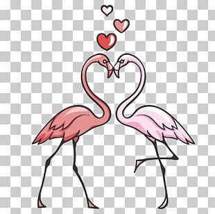 Flamingo Bird Pink PNG