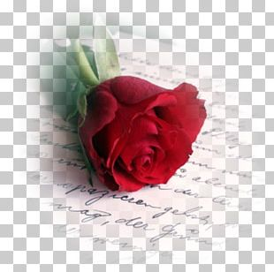Valentine's Day Love Letter Romance Poetry PNG