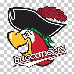 Barry University Barry Buccaneers Men's Basketball Barry Buccaneers Women's Basketball Logo Bucky The Parrot PNG