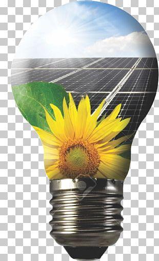 Solar Panels Solar Energy Photovoltaic Power Station Solar Power Photovoltaics PNG