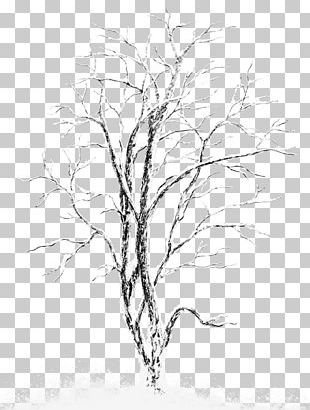 Snow Tree Stock Photography PNG