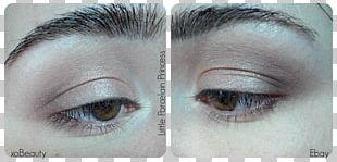 Eyelash Extensions Eye Shadow Cosmetics Beauty PNG