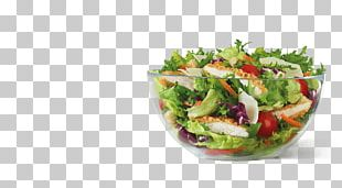 Vegetarian Cuisine Dish Salad Vegetable Food PNG
