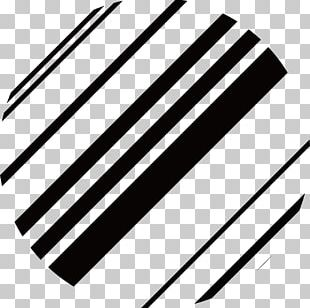 Line Circle Black And White PNG