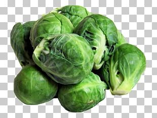 Brussels Sprout Vegetable Broccoli Sprouts Sprouting Food PNG