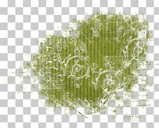 Desktop Grasses Computer Font PNG