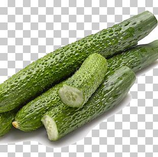 Cucumber Spreewald Gherkins Zucchini Vegetable Hot Pot PNG